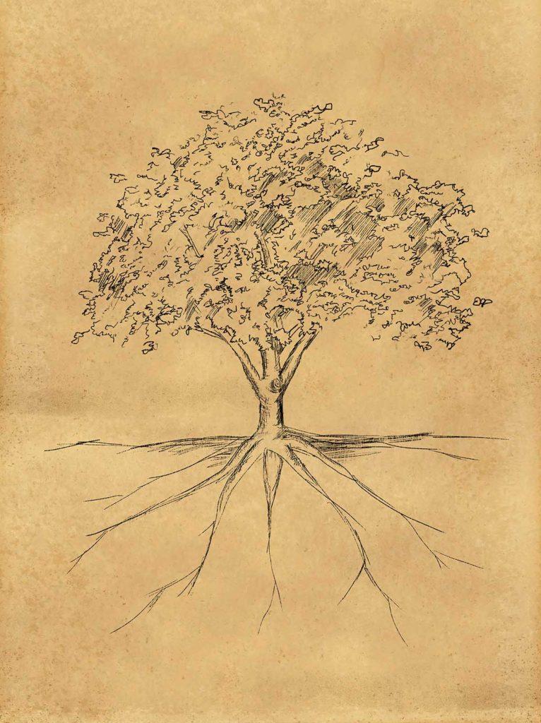 Boceto de un árbol hecho a tinta sobre hoja amarilla. Se ven desde las raíces, bajo tierra, hasta las hojas de la copa