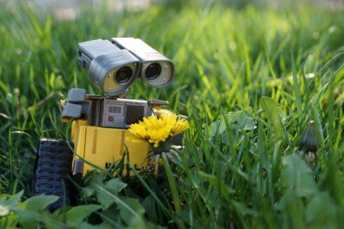 Wall-E-robot-yellow-flower_2880x1800